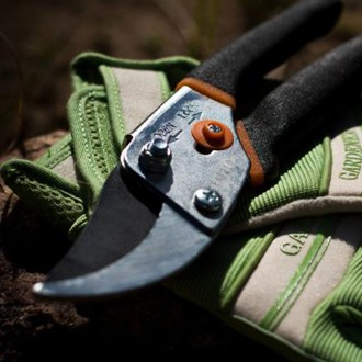 gants-secateur_cc_flickr_nomadic_lass_5725078838